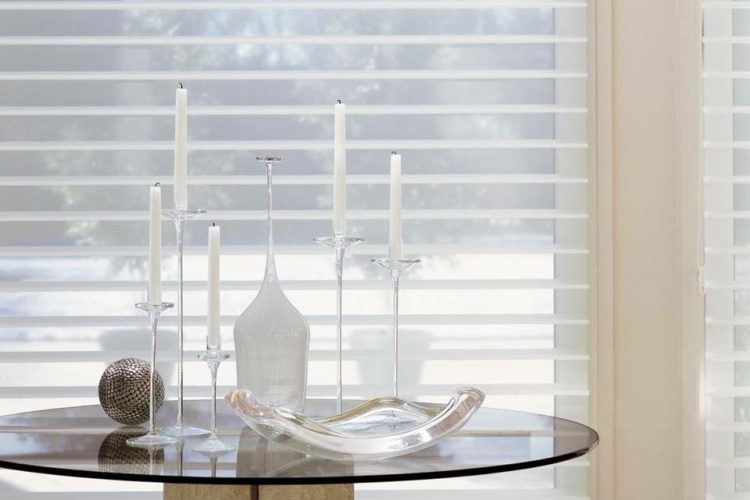 Fall and winter Silhouette window shades